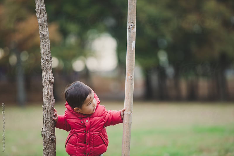 Little boy standing by tree by Lauren Naefe for Stocksy United