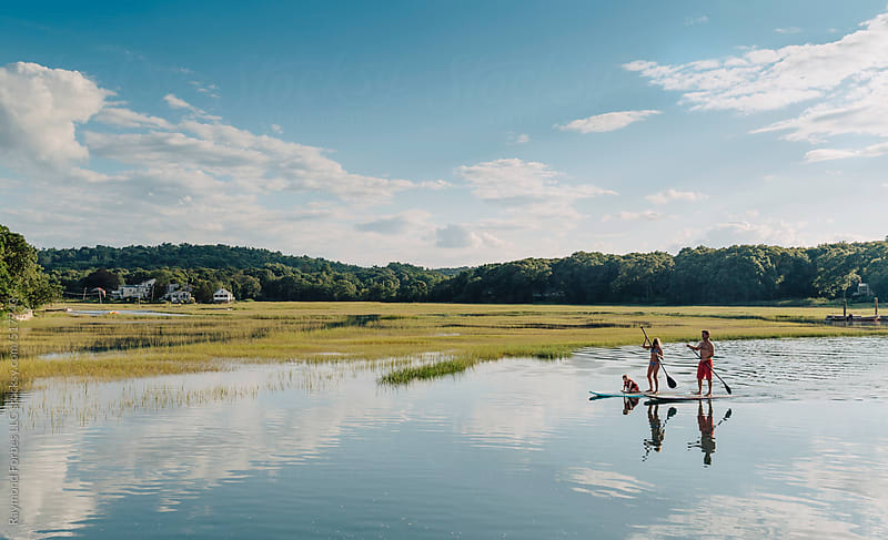 Family on Paddleboards in Marsh by Raymond Forbes LLC for Stocksy United