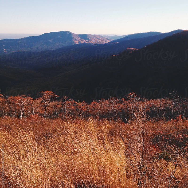 Landscape views of the Shenandoah Mountains in Virginia by Greg Schmigel for Stocksy United