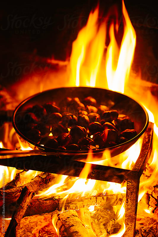 Bonfire cooking chestnuts by CACTUS Blai Baules for Stocksy United