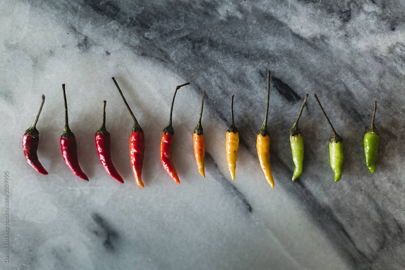 Stoplight Thai Bird's Eye Chili Peppers by Daniel Inskeep for Stocksy United