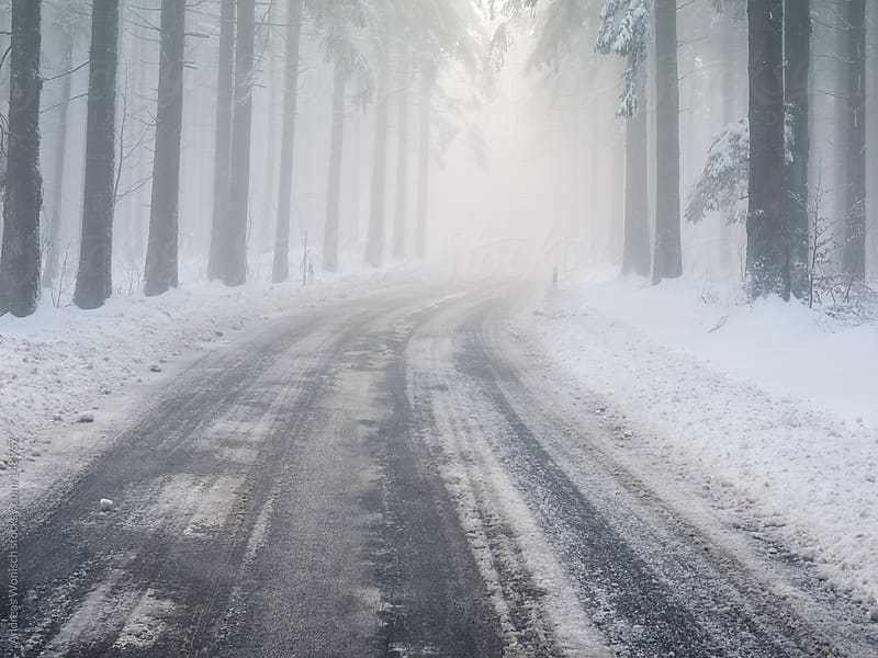 Road leading through Foggy Winter Forest by Andreas Wonisch for Stocksy United