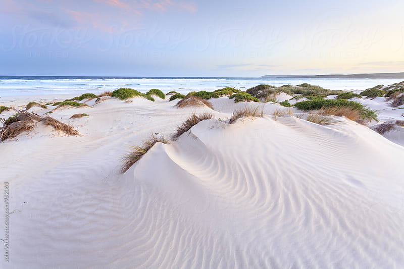 Sand dunes at Sleaford Bay. Eyre Peninsula. South Australia. by John White for Stocksy United