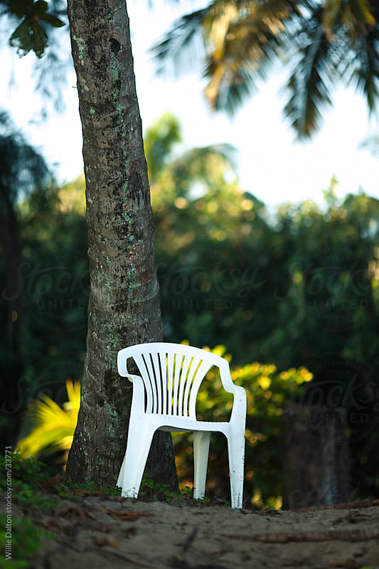 Empty Chair Under Palm Tree by Willie Dalton for Stocksy United