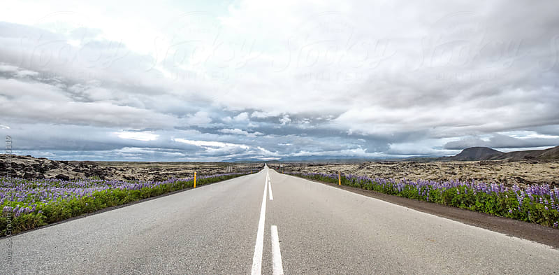 icelandic road by Andreas Gradin for Stocksy United