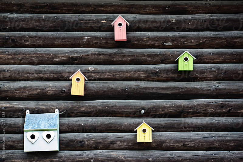 Colorful Bird Houses on a dark wooden wall by Ina Peters for Stocksy United