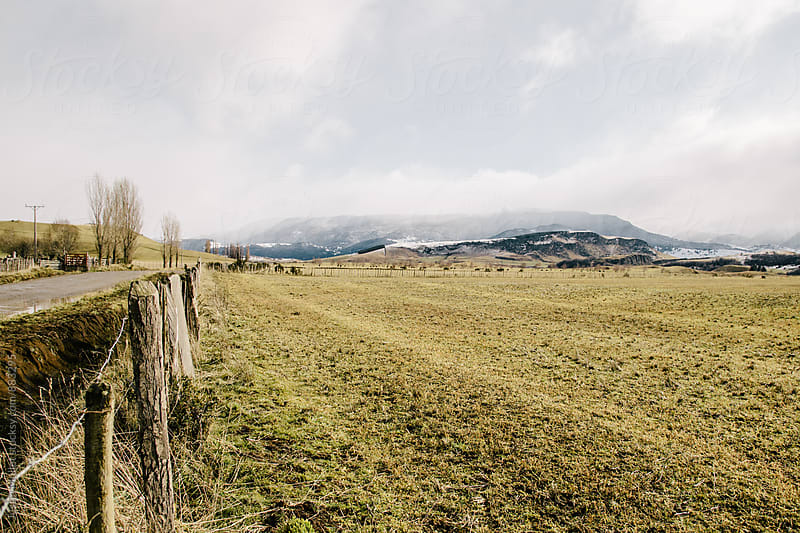 Empty pasture land beside a road in Patagonia by Justin Mullet for Stocksy United