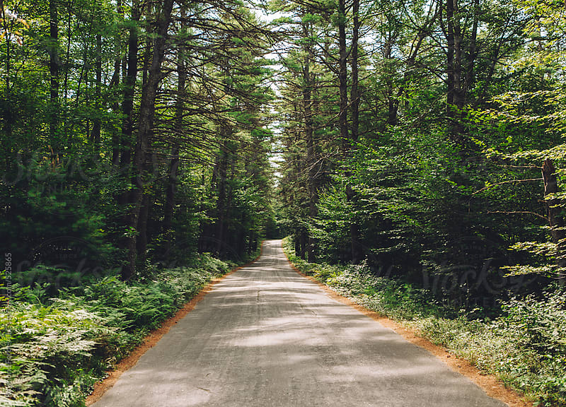 Rural Road in New Hampshire by Raymond Forbes LLC for Stocksy United