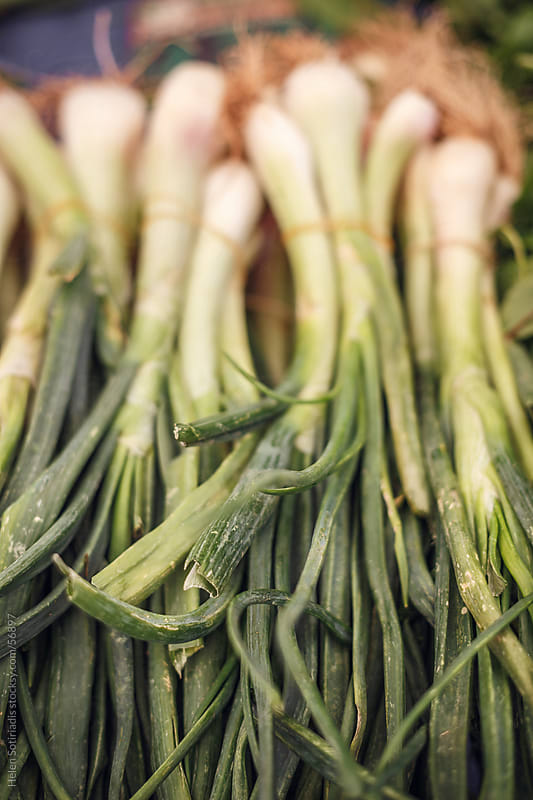 Green onions at the local market by Helen Sotiriadis for Stocksy United