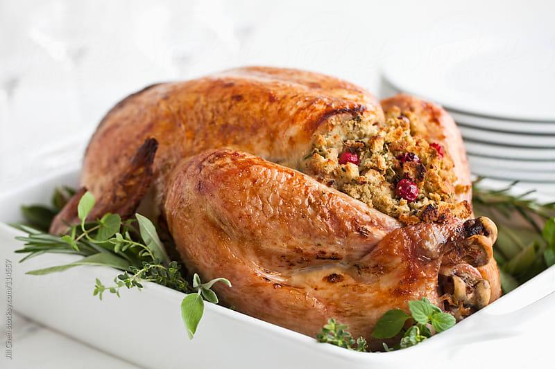 Stuffed Roast Turkey by Jill Chen for Stocksy United