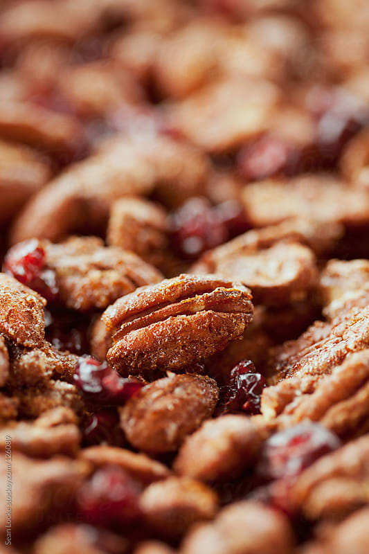 Nuts: Sugar Spiced Roasted Nuts With Cranberries by Sean Locke for Stocksy United