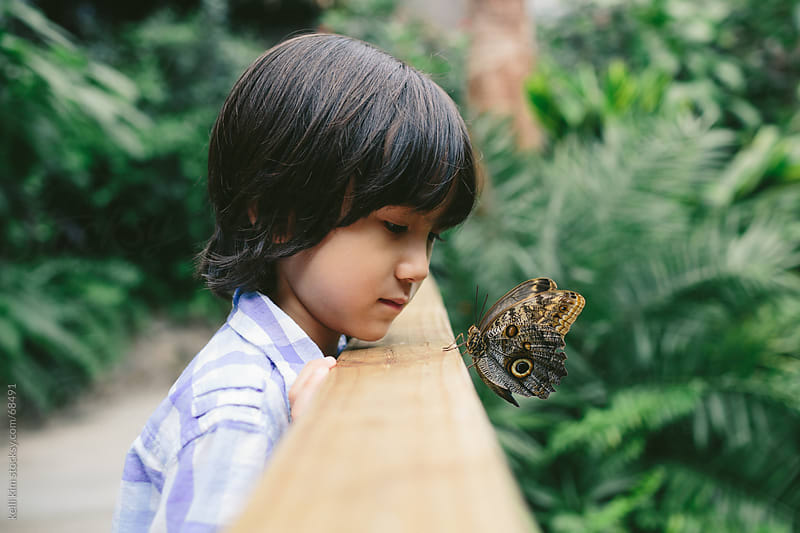 A Young Boy Spends A Quiet Closeup Moment With Butterfly by Kelli Seeger Kim for Stocksy United