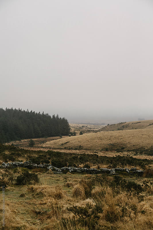 Dartmoor Landscape by Agencia for Stocksy United