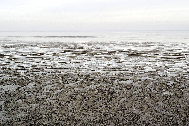 The wadden sea at low tide by Marcel for Stocksy United