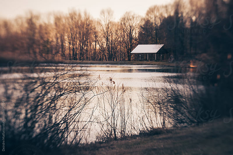 Pond and pavillion in a park in winter. by Deirdre Malfatto for Stocksy United