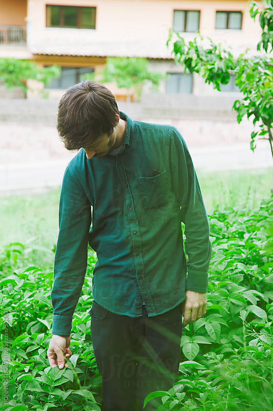 Young modern man standing in a patatoes plants of a orchard. by BONNINSTUDIO for Stocksy United