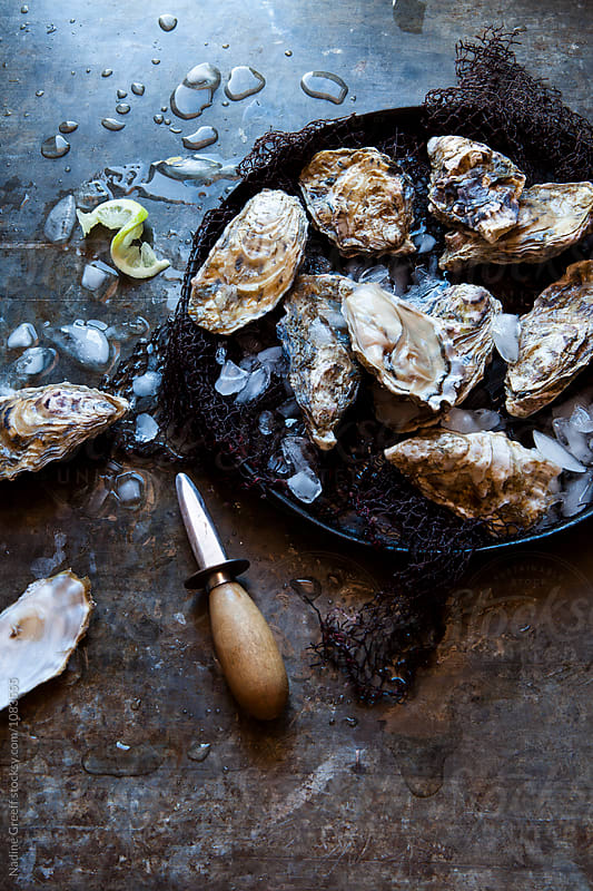 Shucked oysters on ice with lemon by Nadine Greeff for Stocksy United