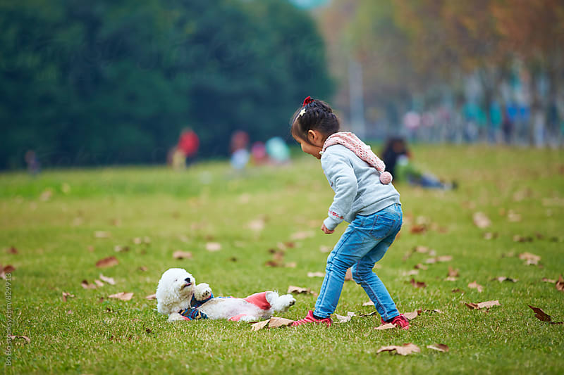 little asian girl with her dog outdoor by Bo Bo for Stocksy United