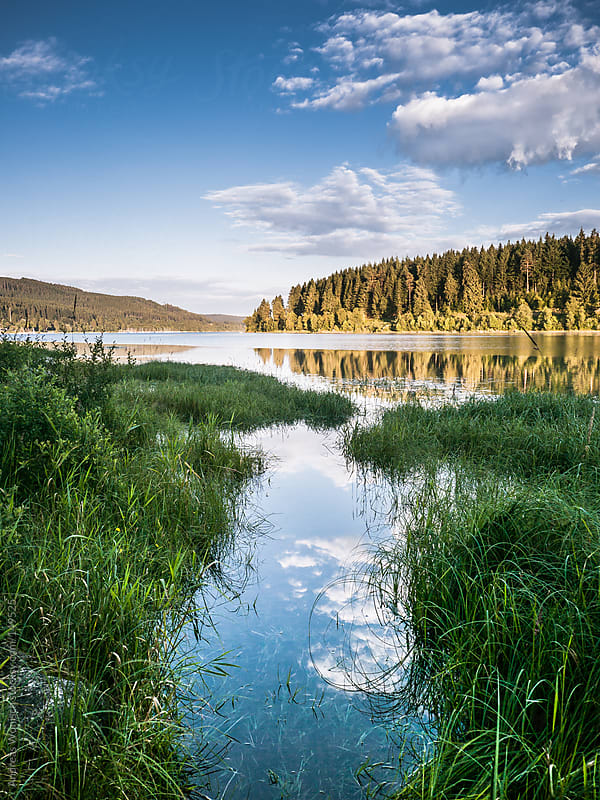 Highland Lake during Summer Time by Andreas Wonisch for Stocksy United