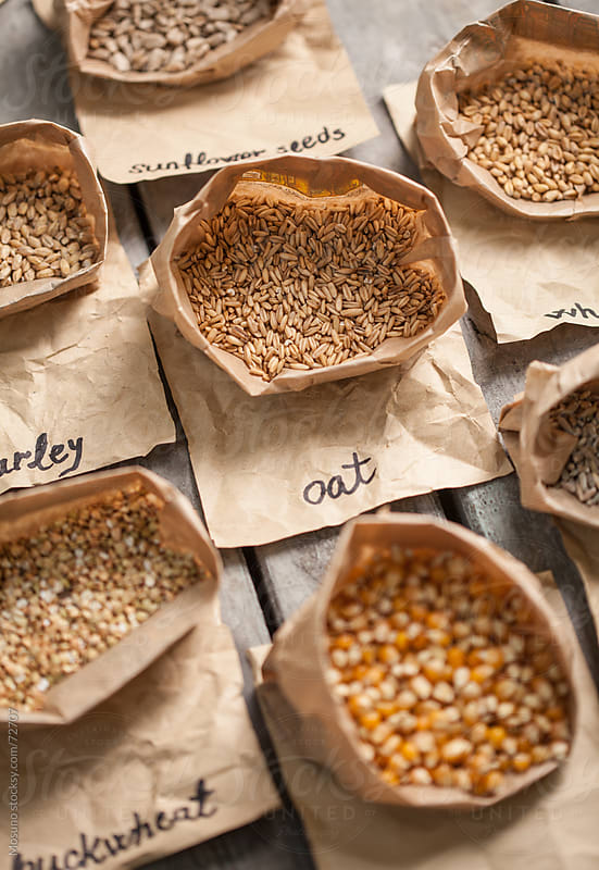 Different Types of Grain by Mosuno for Stocksy United
