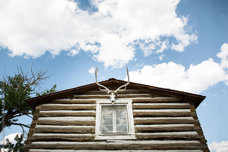 Historic Log Cabin with Skull and Antlers  by Meg Pinsonneault for Stocksy United