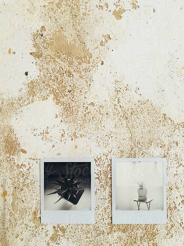 Two Black and White Polaroids on Shabby Wall by VISUALSPECTRUM for Stocksy United