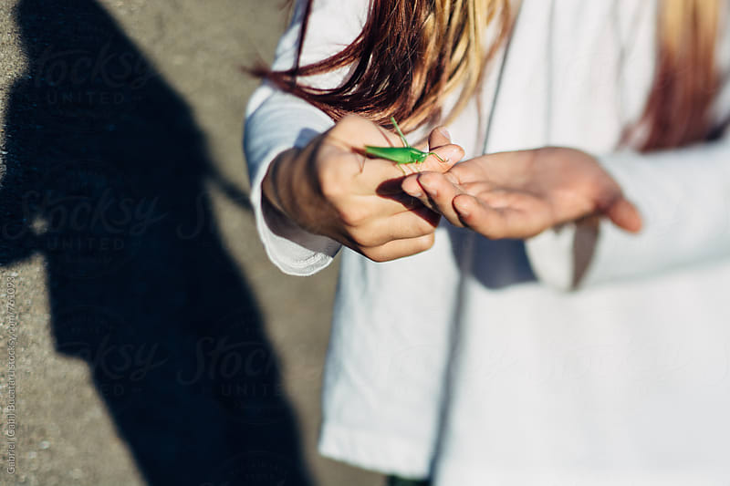 Girl holding a grasshopper by Gabriel (Gabi) Bucataru for Stocksy United