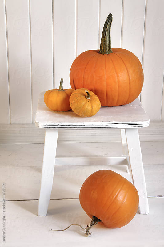 Pumpkins on small bench by Sandra Cunningham for Stocksy United