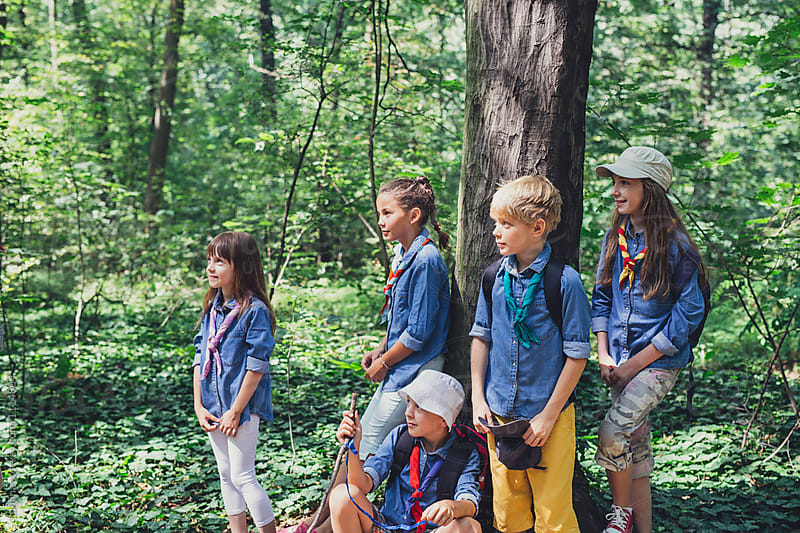 Group of Children Scouts in The Woods