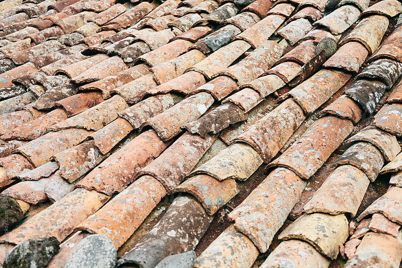 Terracotta Roof Tiles by Agencia for Stocksy United