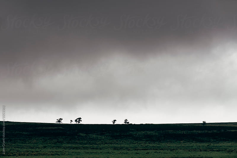 Storm clouds over distant trees on barren moorland. Derbyshire, UK. by Liam Grant for Stocksy United
