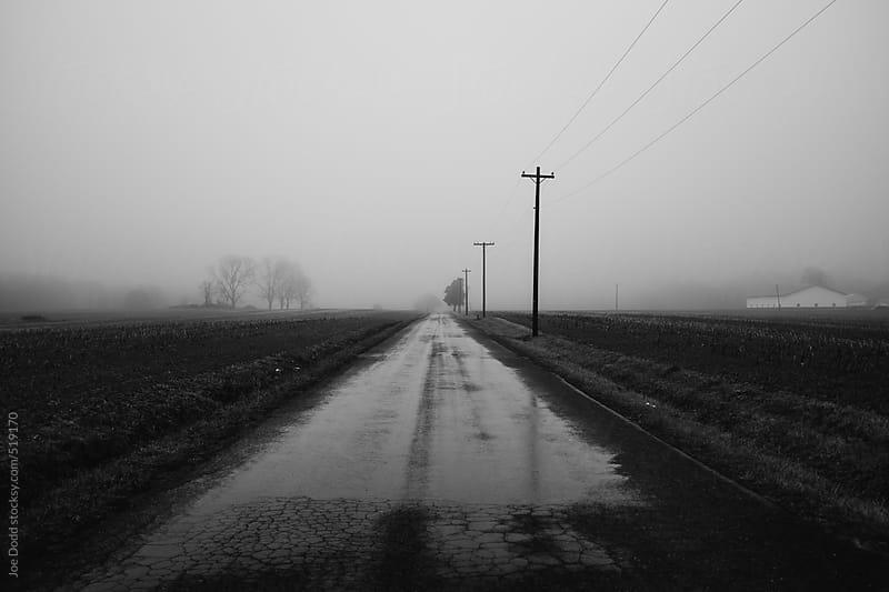 Foggy Road by Joe Dodd for Stocksy United