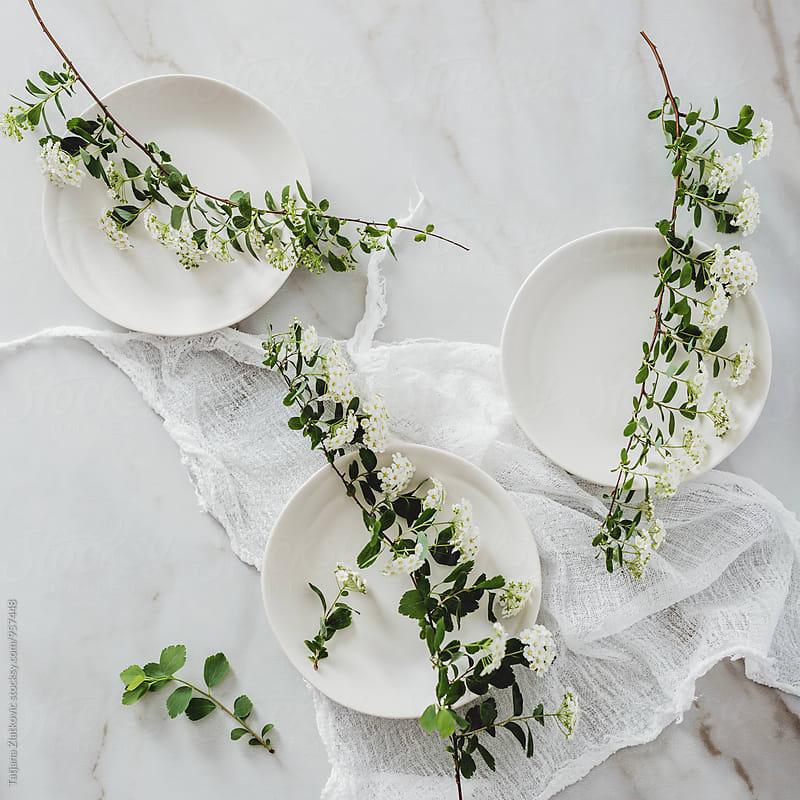 Spring flowers by Tatjana Zlatkovic for Stocksy United