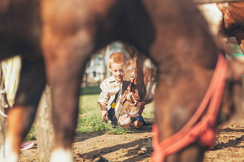 Caucasian Boy Feeding a Horse by Lumina for Stocksy United