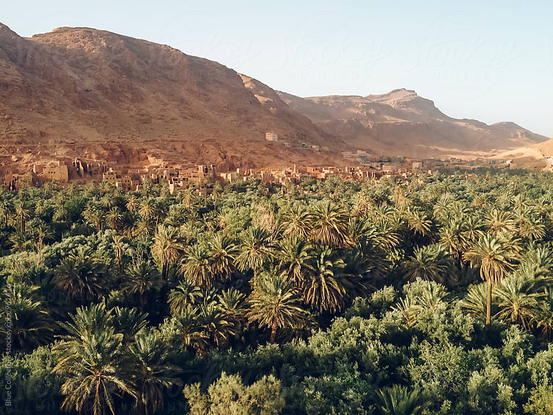 Oasis village view of grand atlas mountains, morocco by Jordi Rulló for Stocksy United