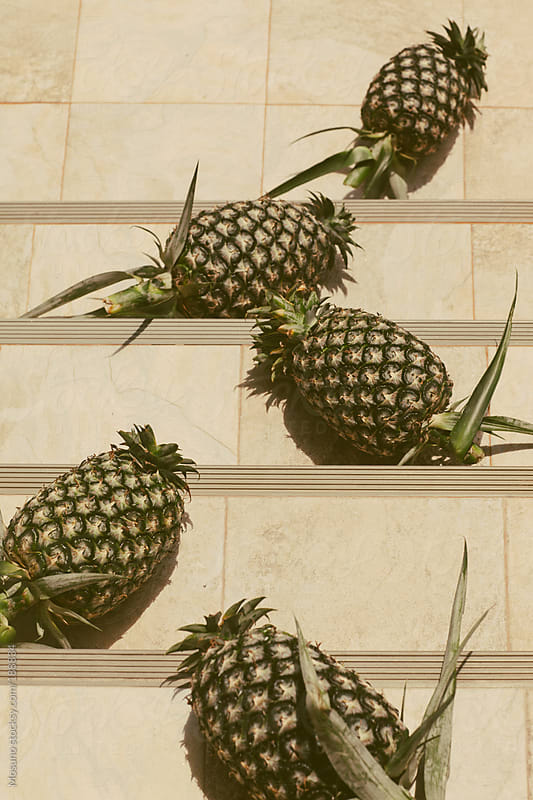 Bunch of Pineapples in the Sun by Mosuno for Stocksy United