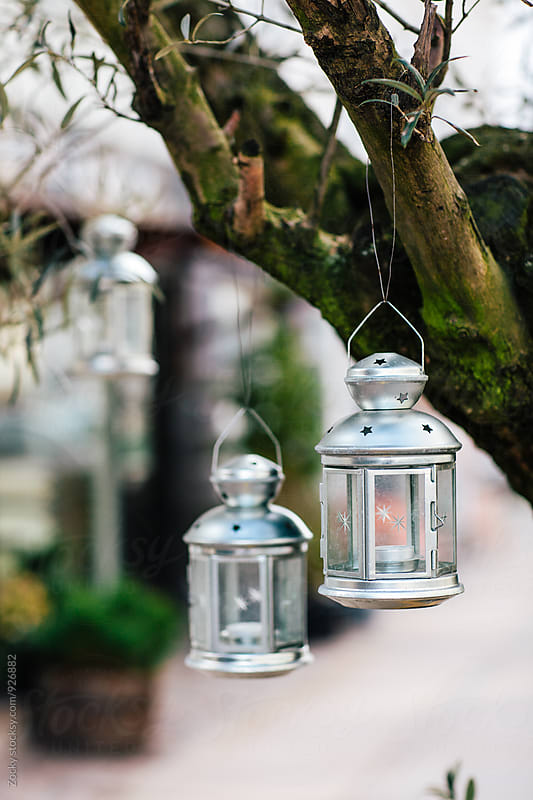 Vintage hanging lantern on tree by Zocky for Stocksy United