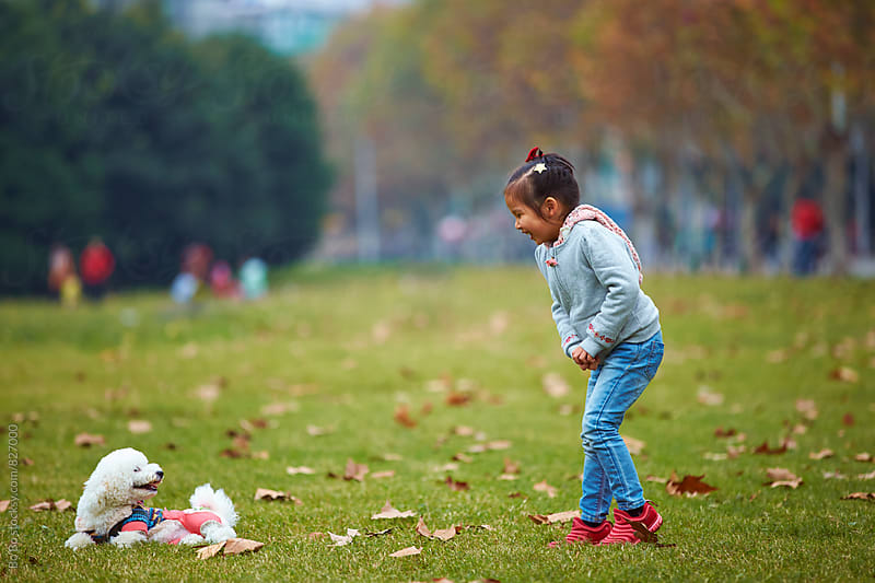 little Chinese girl outdoor in the park with her dog at autumn time by Bo Bo for Stocksy United