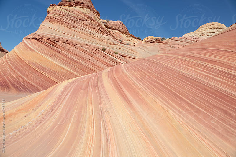 The Amazing Wave in North Coyote Buttes by Abby Mortenson for Stocksy United