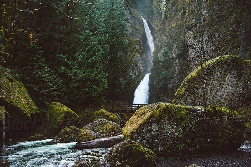 Stunning waterfall in the Pacific Northwest by Kate Daigneault for Stocksy United