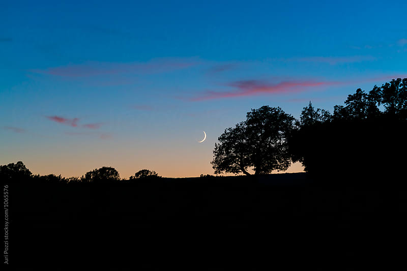 waxing crescent moon in a distant landscape by Juri Pozzi for Stocksy United