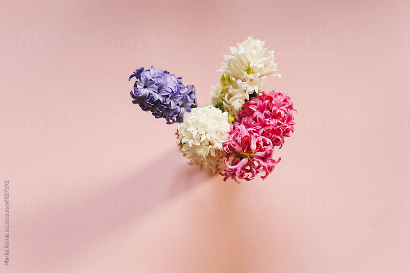Colorful flowers from above  by Marija Kovac for Stocksy United