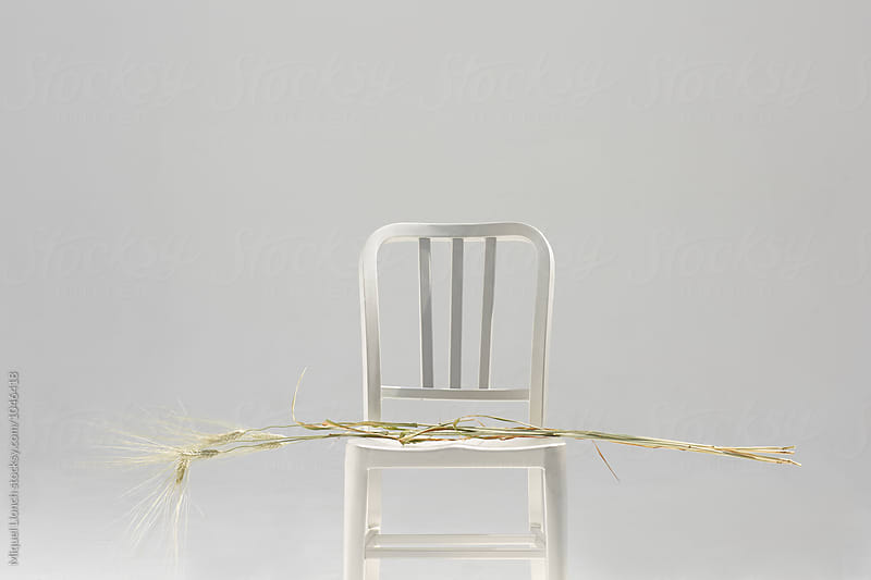 Metallic chair with plants of cammut wheat by Miquel Llonch for Stocksy United