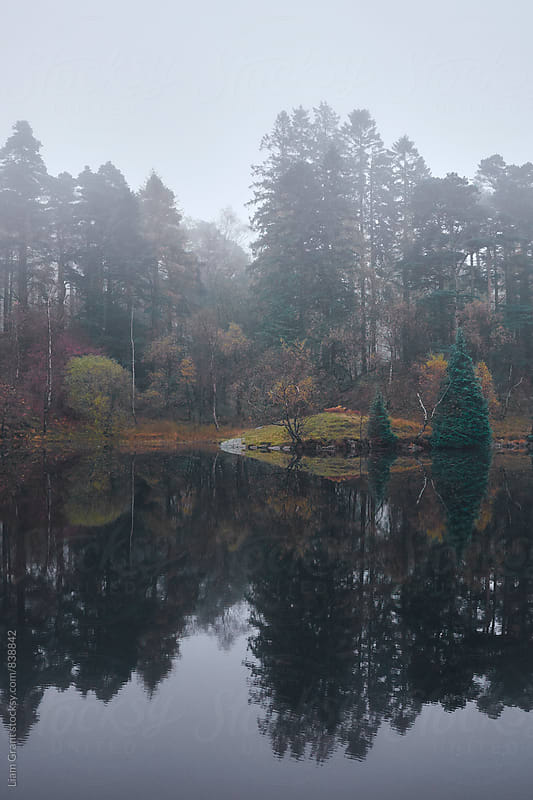Fog and reflections. Tarn Hows, Cumbria, UK. by Liam Grant for Stocksy United