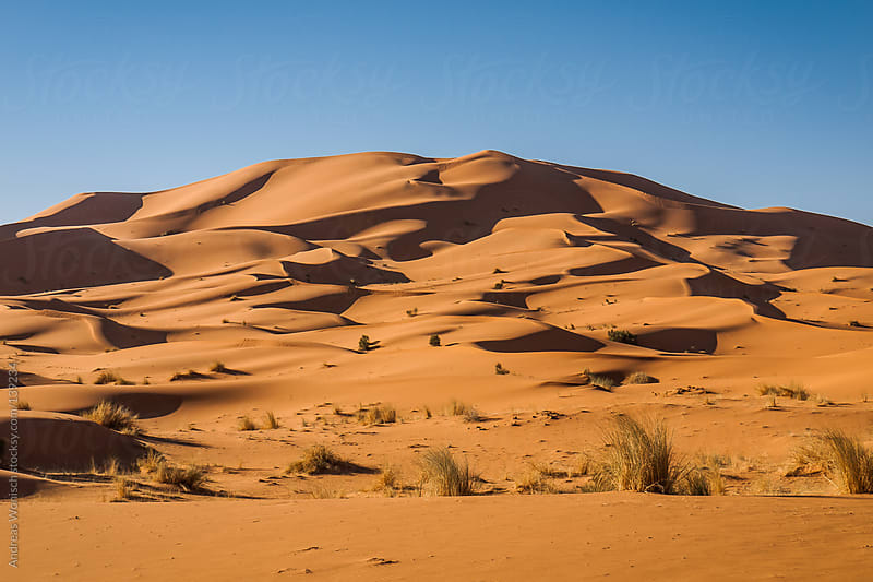 Desert Sand Dunes near Morocco's Merzouga by Andreas Wonisch for Stocksy United