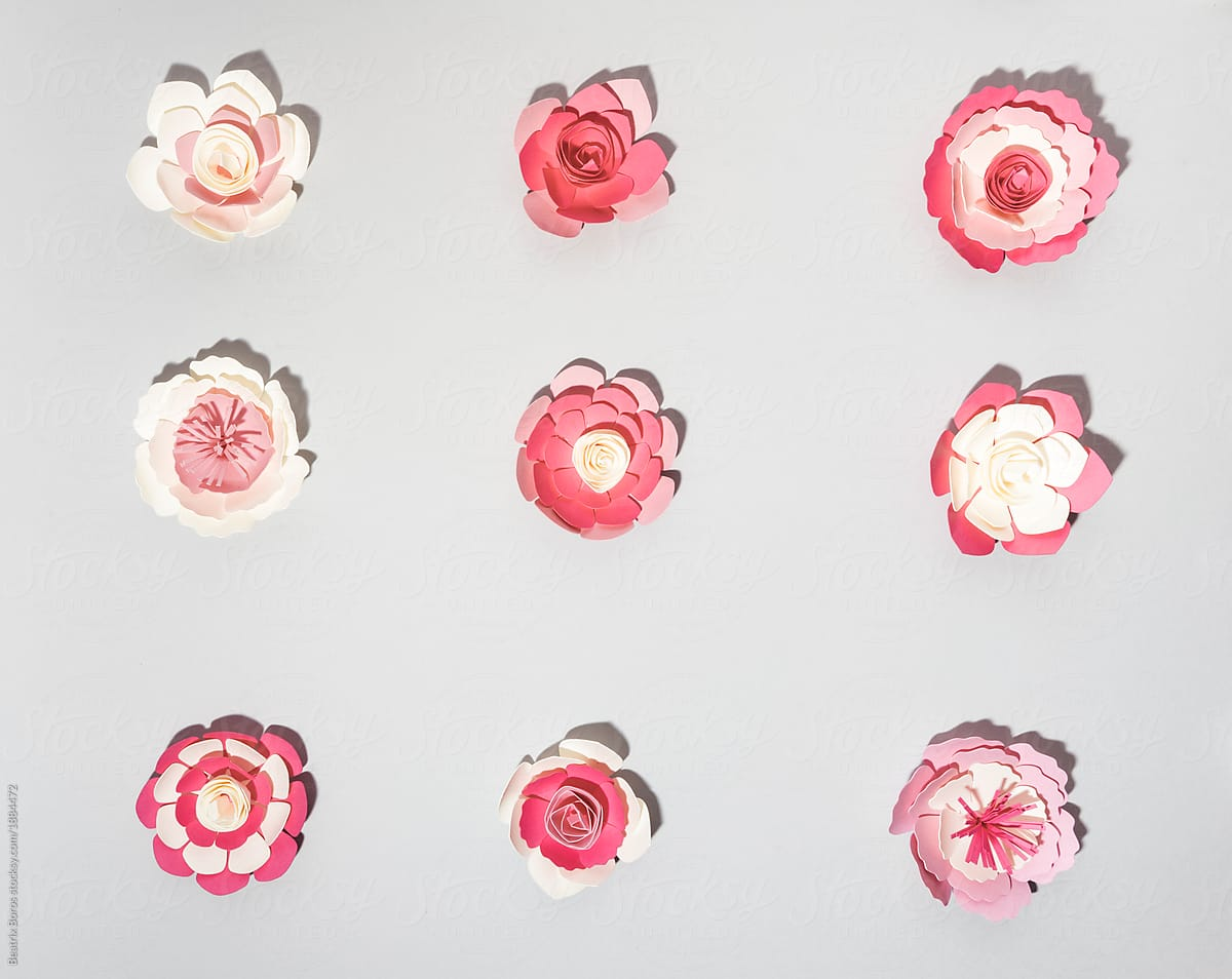 Paper Flower Arrangement Stocksy United
