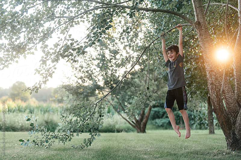 Tree climbing by Melanie DeFazio for Stocksy United