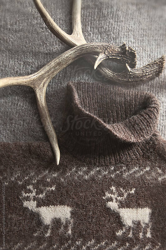 Sweater with deer antlers with rustic look by Sandra Cunningham for Stocksy United