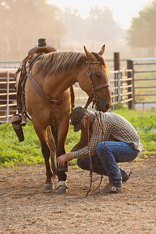 man straps on equipment on horse's leg by Tana Teel for Stocksy United