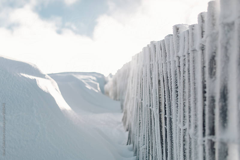 Snow fence by Jordi Rulló for Stocksy United